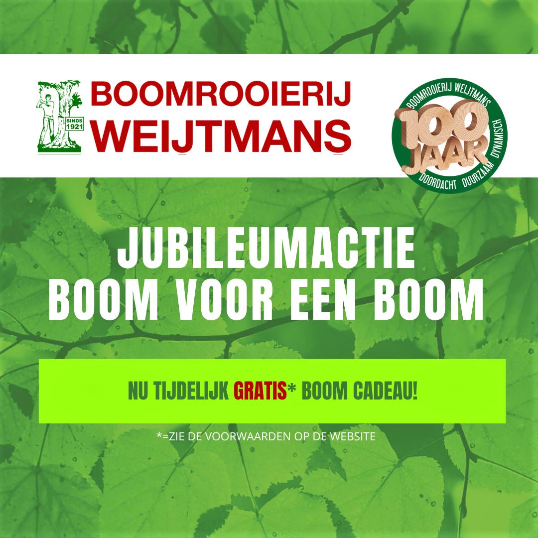 Jubileumactie: Boom voor een Boom